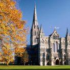 Counsellor in Salisbury